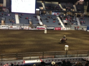 Agribition8